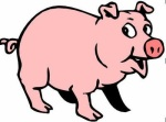 cartoon-pig-55762